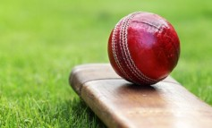 Cricket: Aycliffe earn battling draw at home to Maltby