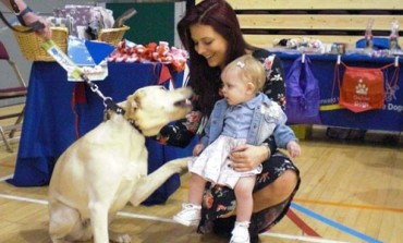 Acorn's 7th annual Petting Zoo at Aycliffe leisure centre