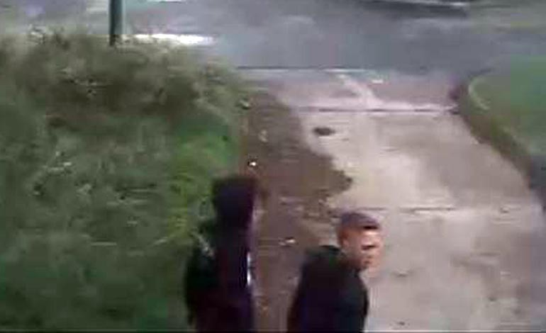 Police appeal after damage to business premises