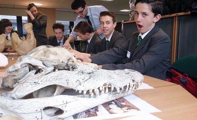 Students celebrate International Science Week