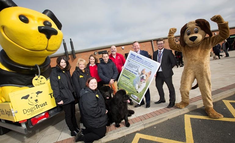 A chip of success for dog campaign