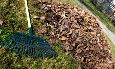 Garden waste collections ending for winter