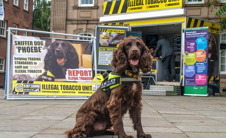 Detection dogs help highlight dangers of illegal tobacco