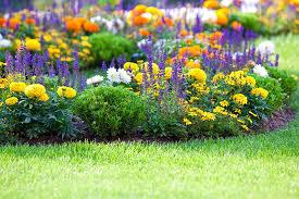 Nominate a garden that makes you smile