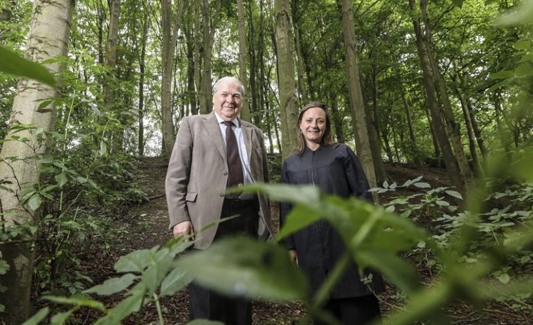 Funding win will help restore County Durham Woodlands