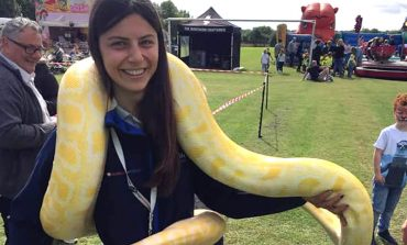 Ssssee what you can find at free community fun day!