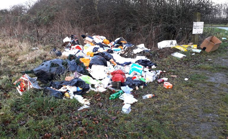 Shildon woman fined for flytipping