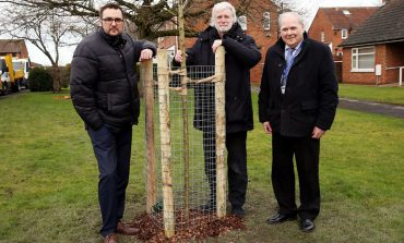 £500k to be spent on thousands of trees – but none for Aycliffe