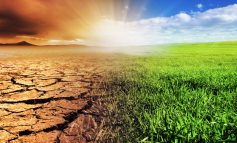Council praised for its climate action plan