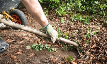 Sign up for 2021 garden waste collections