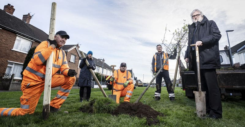 Opportunity for people to plant trees in their area