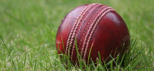 cricket-ball