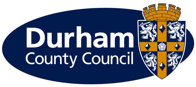 Volunteers needed to join council committee