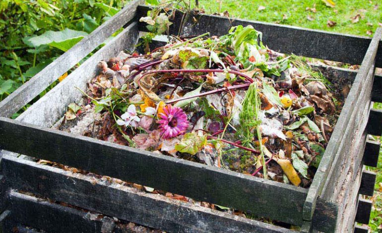 Don't waste this offer – buy one compost bin and get one half price!