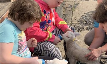 Fun activities with food on offer during summer holidays